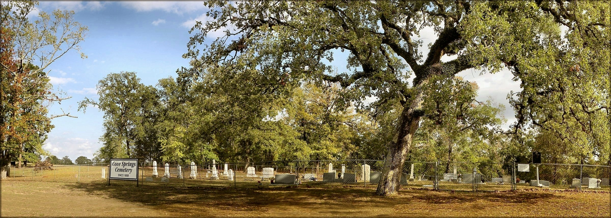 Cove Springs Cemetery in Historic Nacogdoches County, Texas