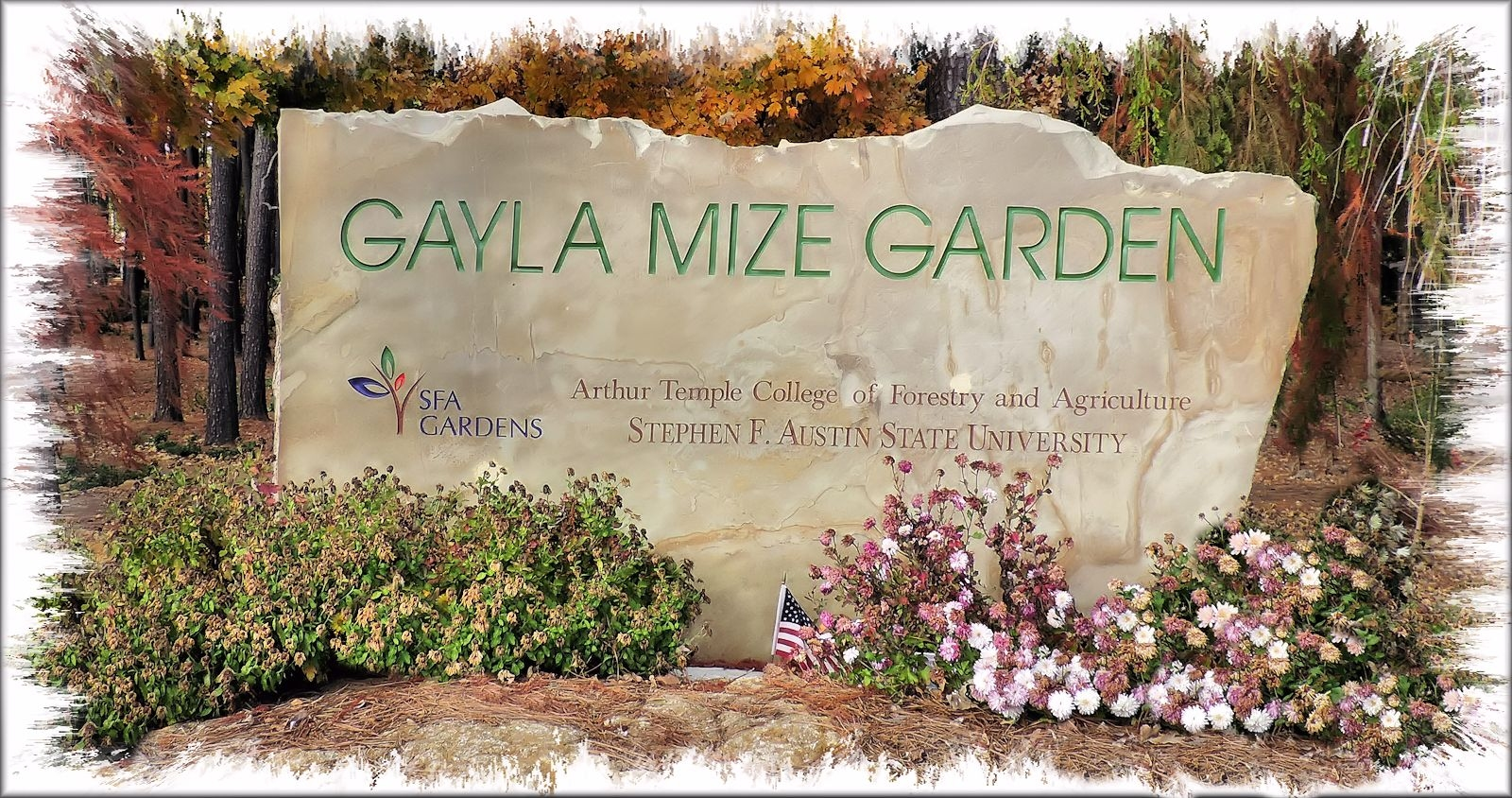 Gayla Mize Garden and the SFA Recreational Trails in Historic Nacogdoches