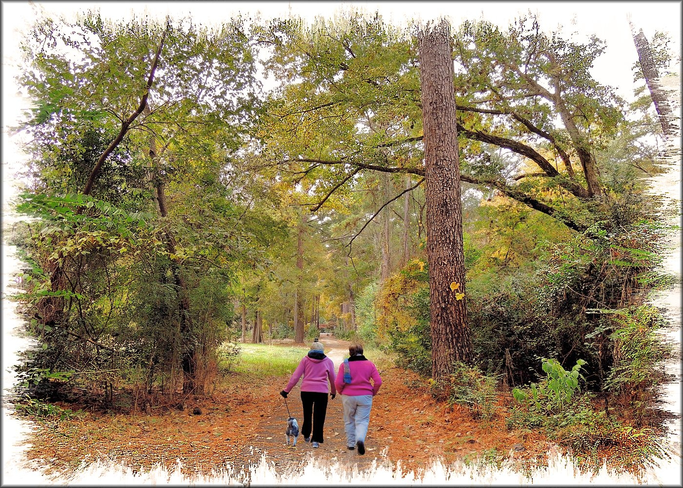 Walkers on the Trail at Gayla Mize Garden in Historic Nacogdoches
