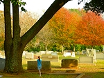 Walking through Oak Grove Cemetery