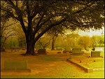 Last Evening at Oak Grove Cemetery