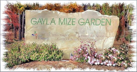 Gayla Mize Garden and the SFA Recreational Trails