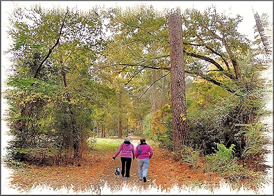 Walkers on the Trail at Gayla Mize Garden