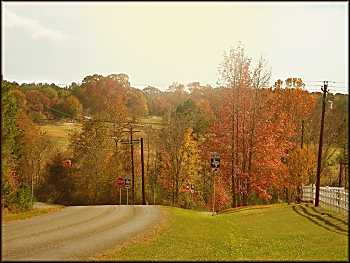 Autumn Landscape on Texas Farm Road 343